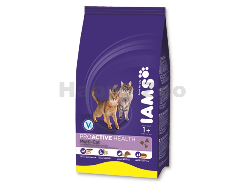 IAMS Cat Adult Multi-Cat Chicken & Salmon 15kg