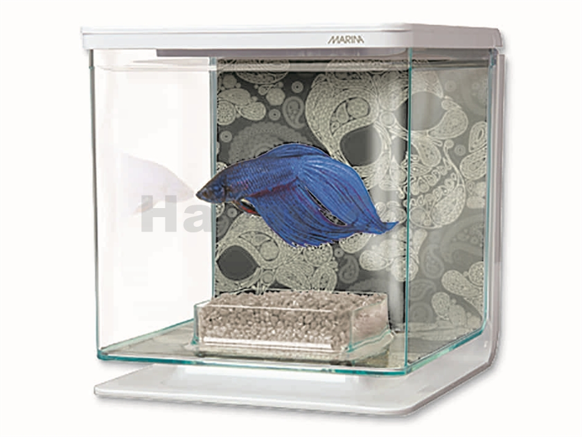 Akvárium MARINA Betta Kit Skull (2l)