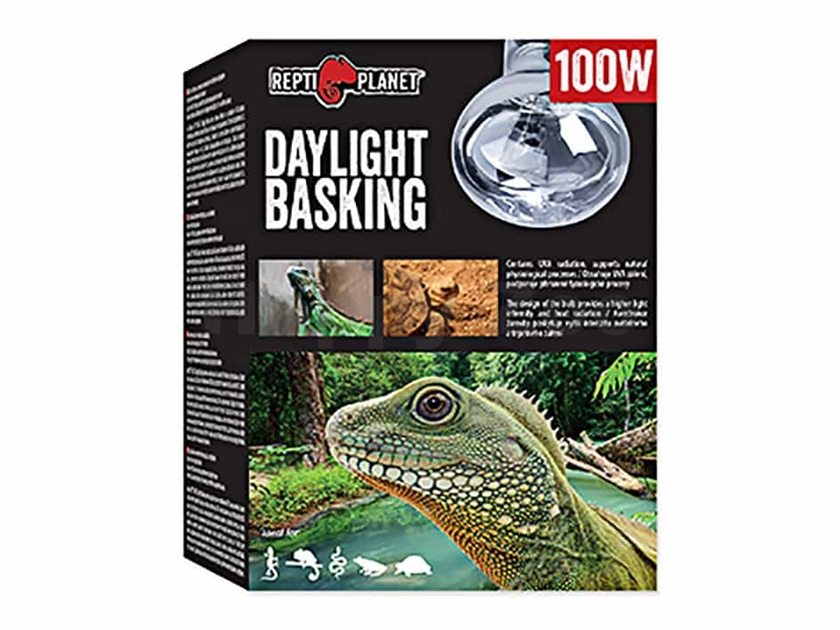 Žárovka REPTI PLANET Daylight Basking (100W)