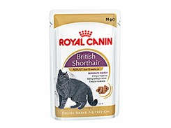 Kapsička ROYAL CANIN British Shorthair 85g
