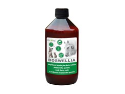 DROMY Horse Boswellia 1000ml